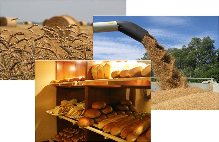 ooo-dolzhanskij-hleb